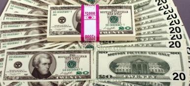 $20 bill style full bundle